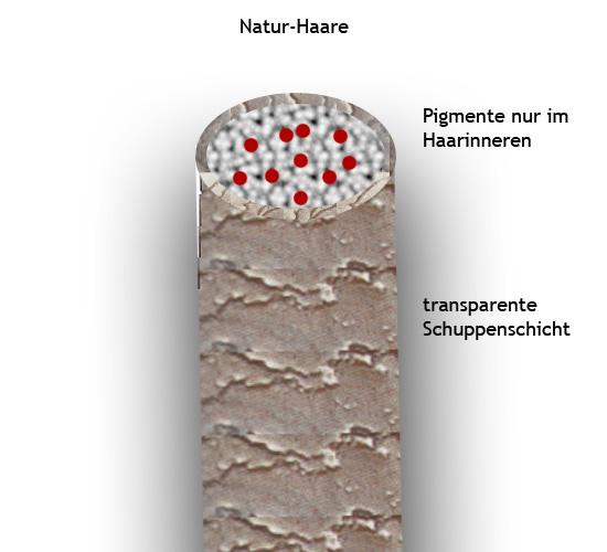 Natur Haare - farblich unbehandelt